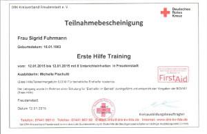 Erste Hilfe Training-7